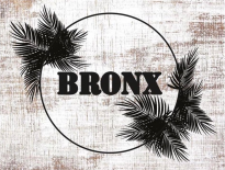 Bronx pop-up store